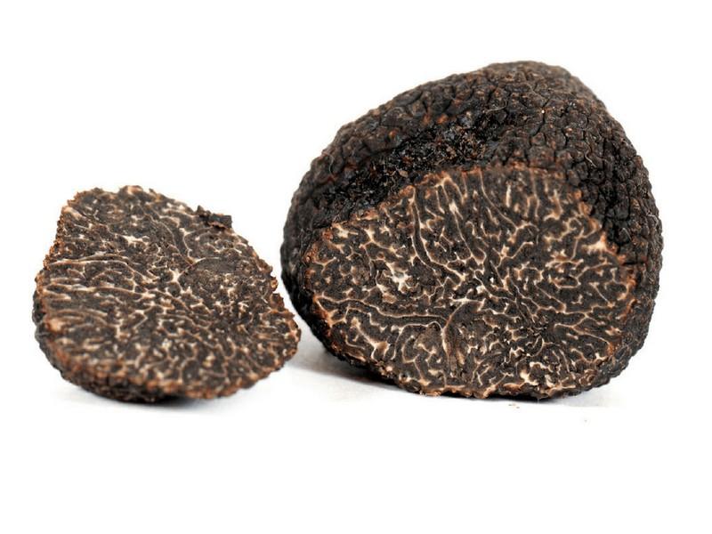 tartufo nero pregiato 100 gr